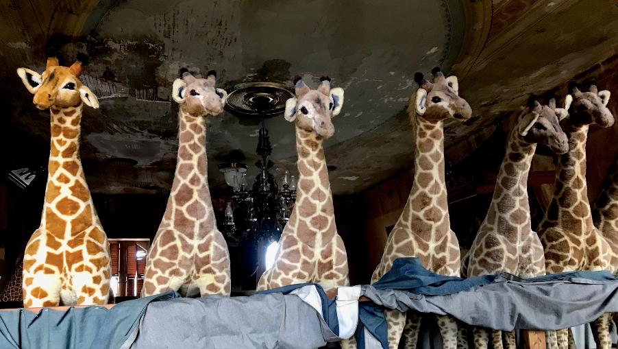 Robert Indiana loved stuffed animals. This fleet of giraffes overlooked his old bedroom.