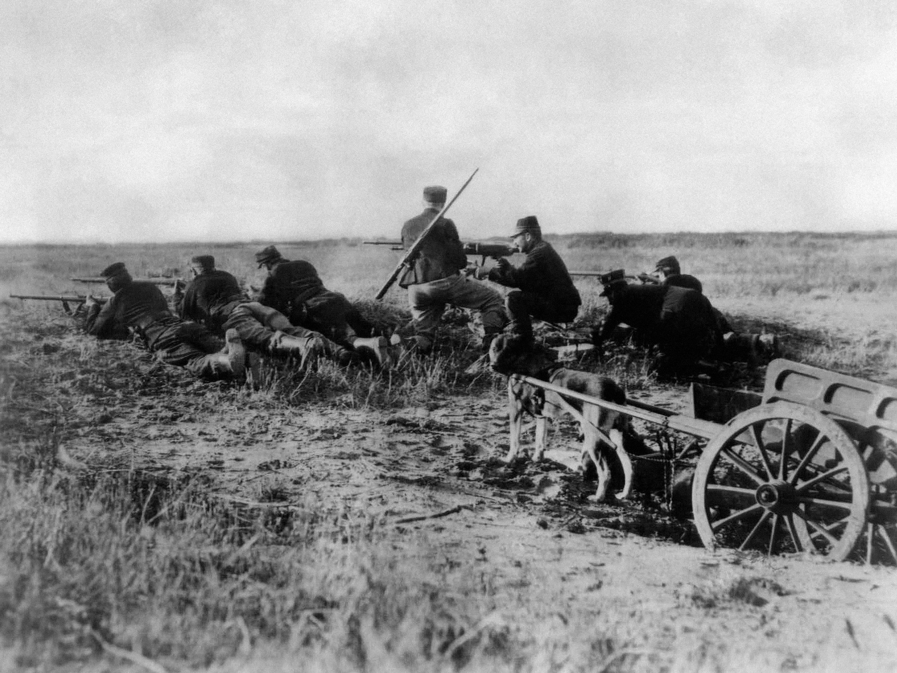 In this August 1914  photo, a Belgian machine gun detachment sets up near Haelen, Belgium. The Belgians often used dogs to draw the ammunitions cart. The Battle of Haelen was also known as the Battle of the Silver Helmets.