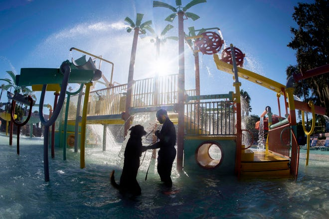 U.S. Air Force Senior Airman Damion Morris, a military dog handler assigned to the 6th Security Forces Squadron, tests the water with his military working dog, Lleonard, at Adventure Island, Tampa, Fla. Oct. 29, 2018. Handlers performed bite drills designed to slow down or stop suspects attempting to escape into a body of water.