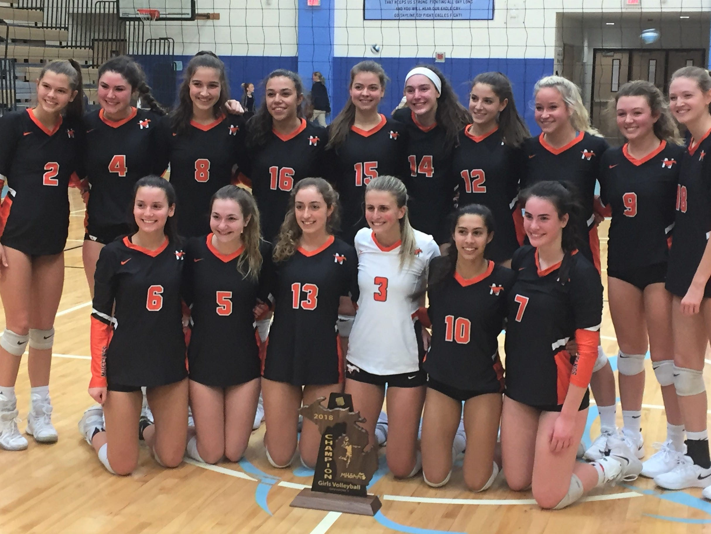 Northville soars past Skyline for D1 regional girls volleyball crown