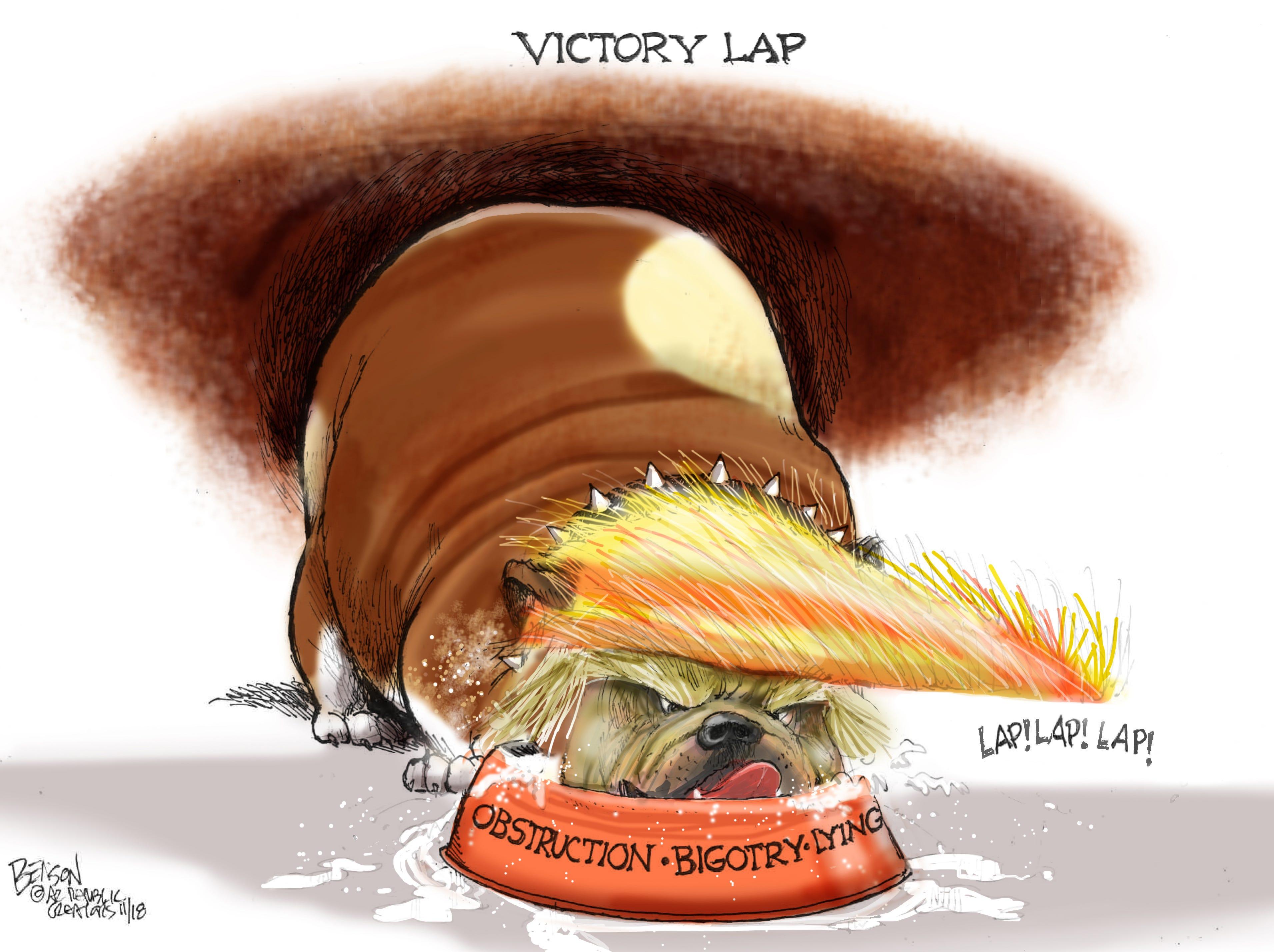 Cartoon for Nov. 11, 2018.