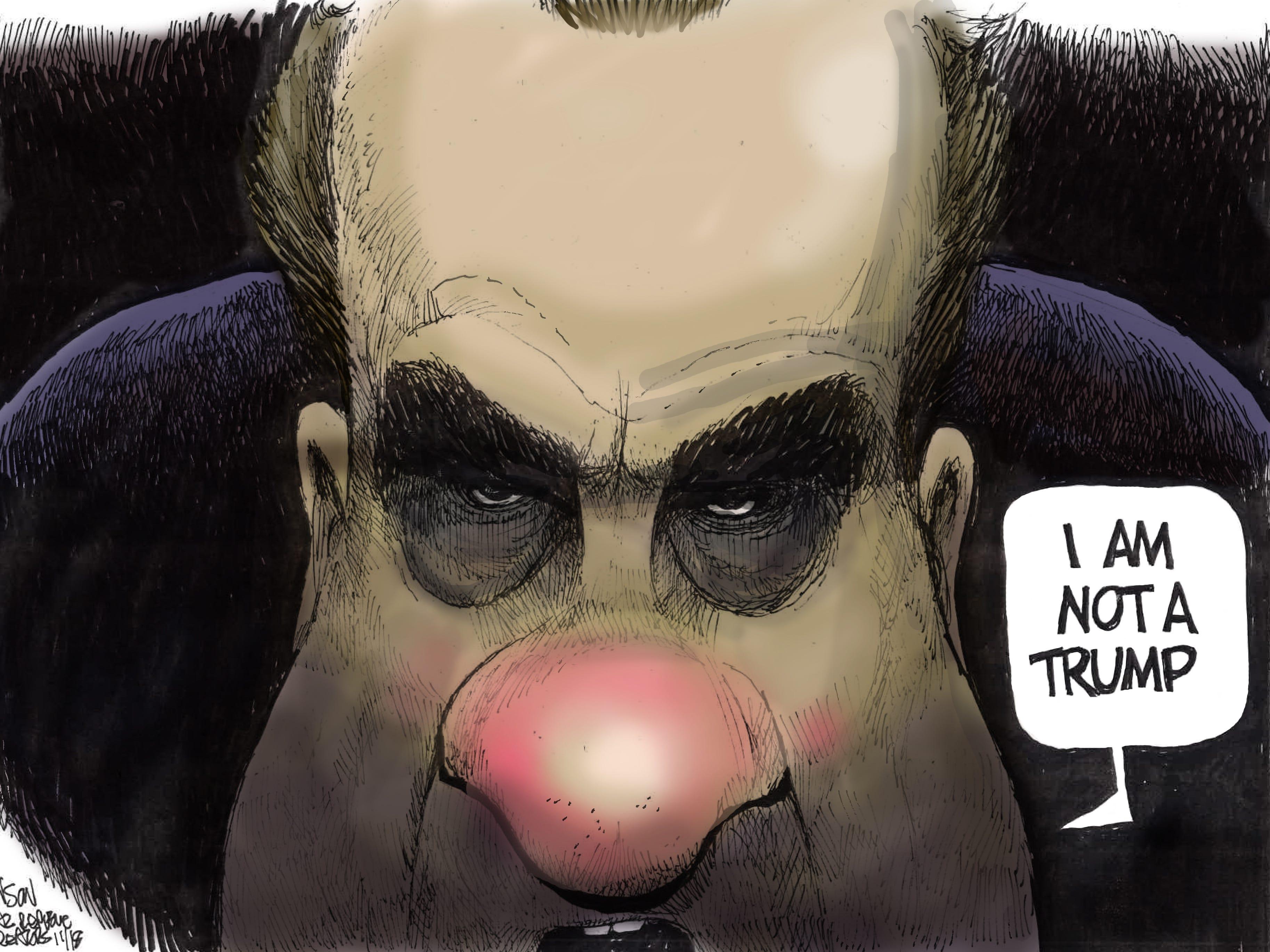 Cartoon for Nov. 9, 2018.