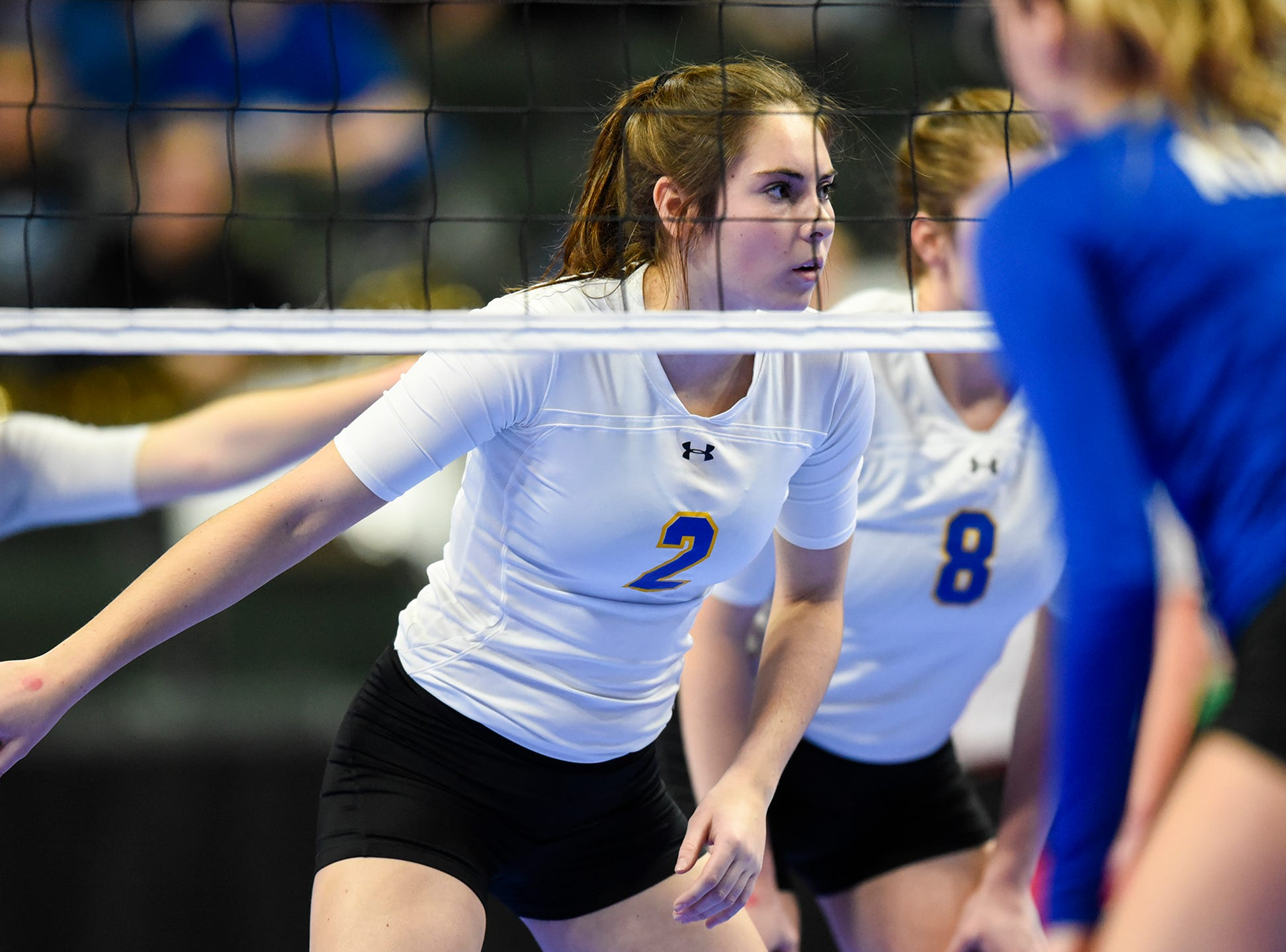 Cathedral's Lucy Pelzel concentrates before a serve during the state Class 2A quarterfinals Thursday, Nov. 8, at the Xcel Energy Center in St. Paul.