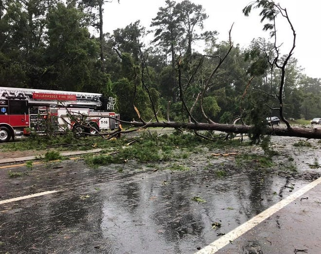 First responders clearing up Tallahassee street after Hurricane Michael.