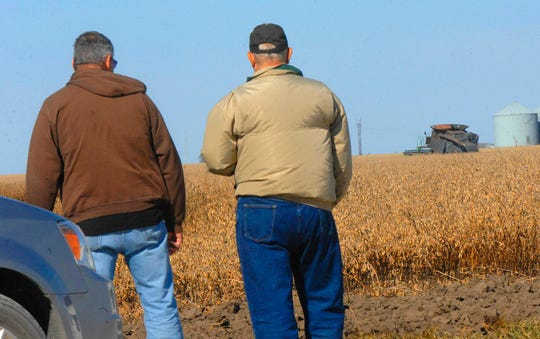 In this Oct. 2018 photo, Crop adjusters attempt to determine the value of a small amount of  unharvested soybeans that were partially burned when Ronald Wickenhauser's combine caught fire on Saturday, Oct. 20, 2018, west of Wapella, Ill. Wickenhauser was burned in the incident and his neighbors helped him harvest the rest of his soybeans.