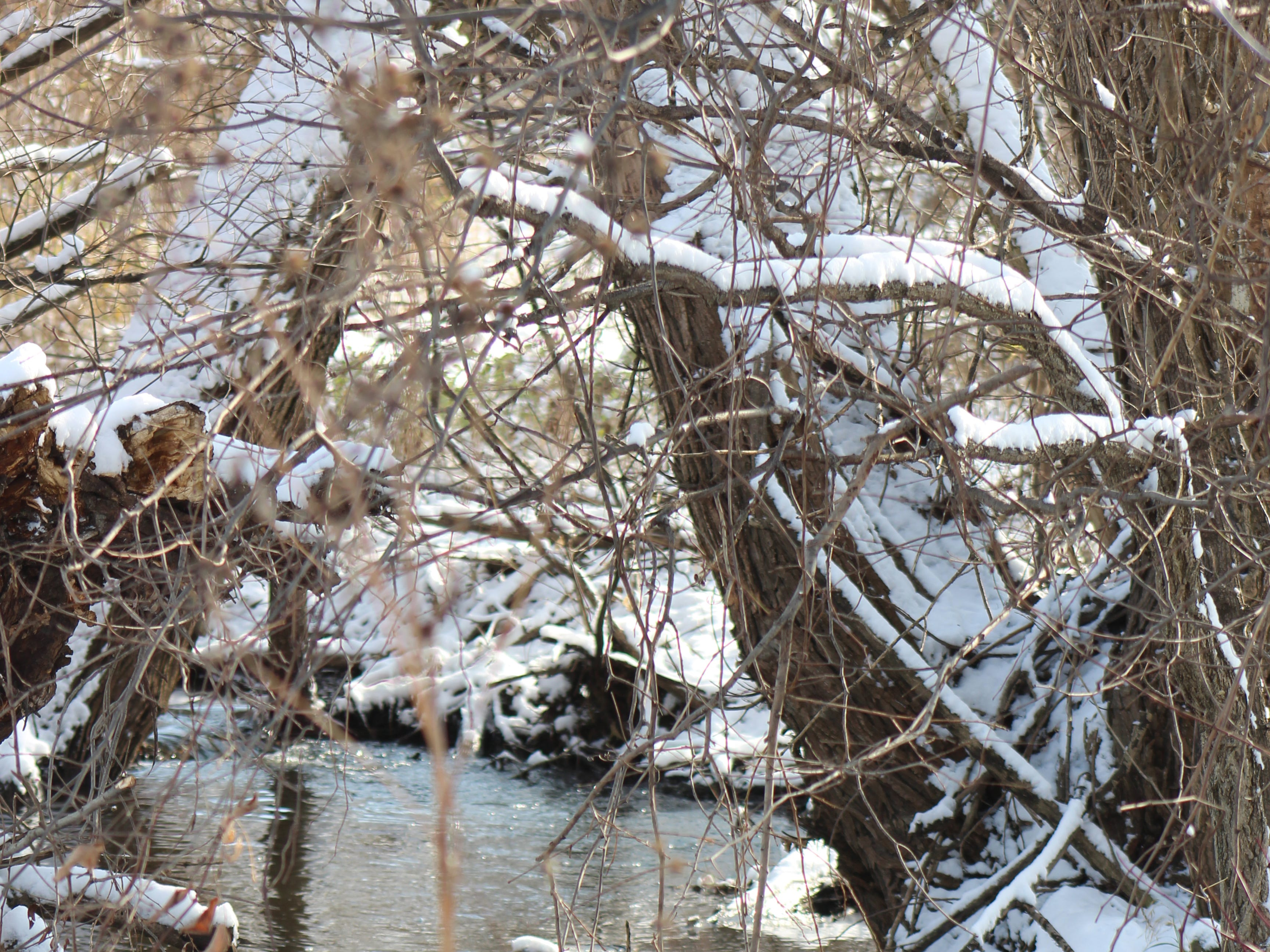 A small tributary stream winds through the landscape dusted with new fallen snow.