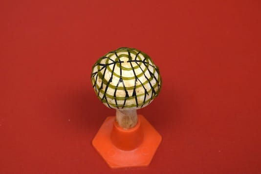 Researchers create 'bionic mushroom' that produces electricity