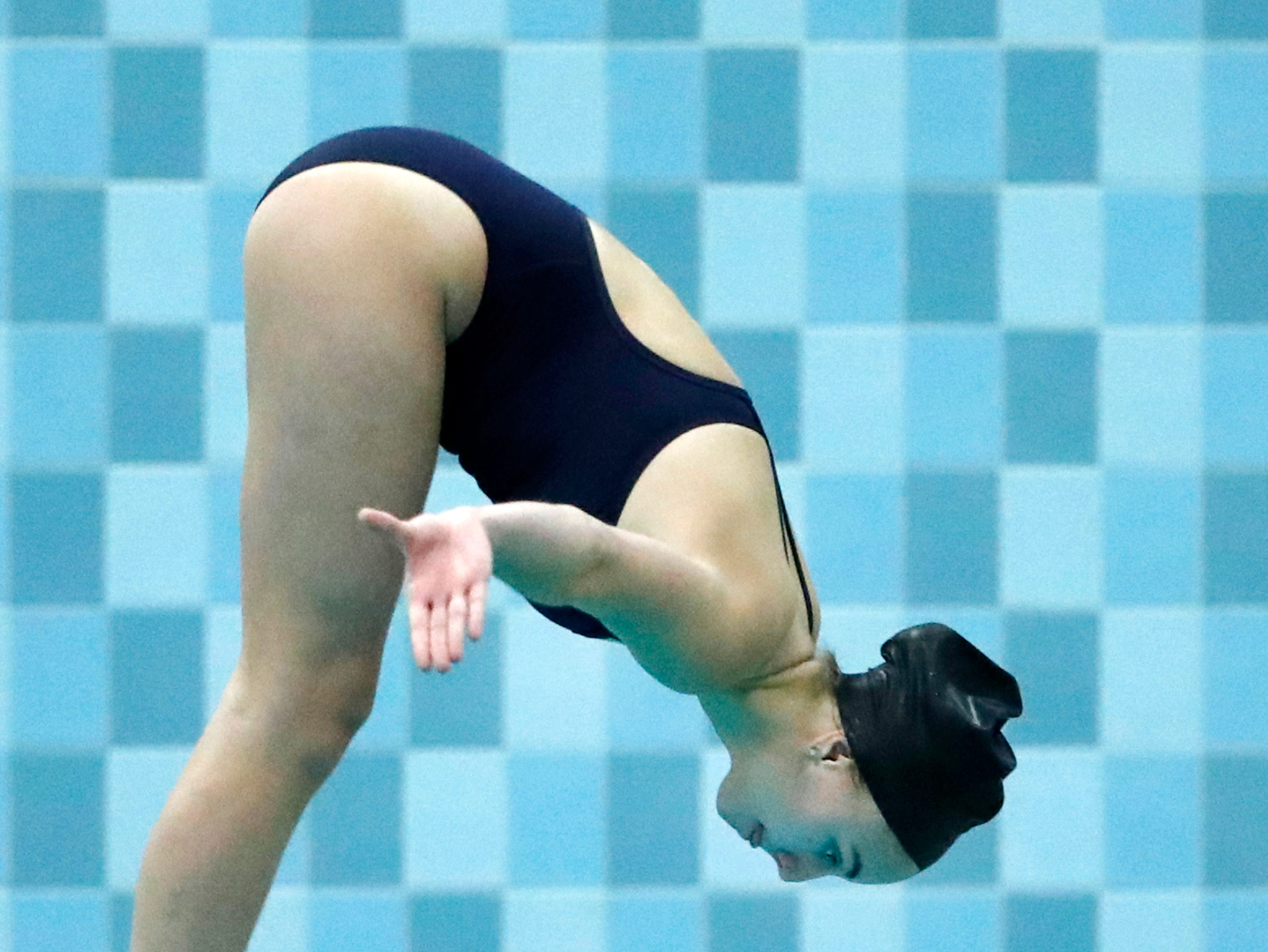 Appleton North's Abby Hopfensperger dives during the WIAA Division 1 State Swimming and Diving meet Saturday, Nov. 10, 2018, at the UW Natatorium in Madison, Wis.