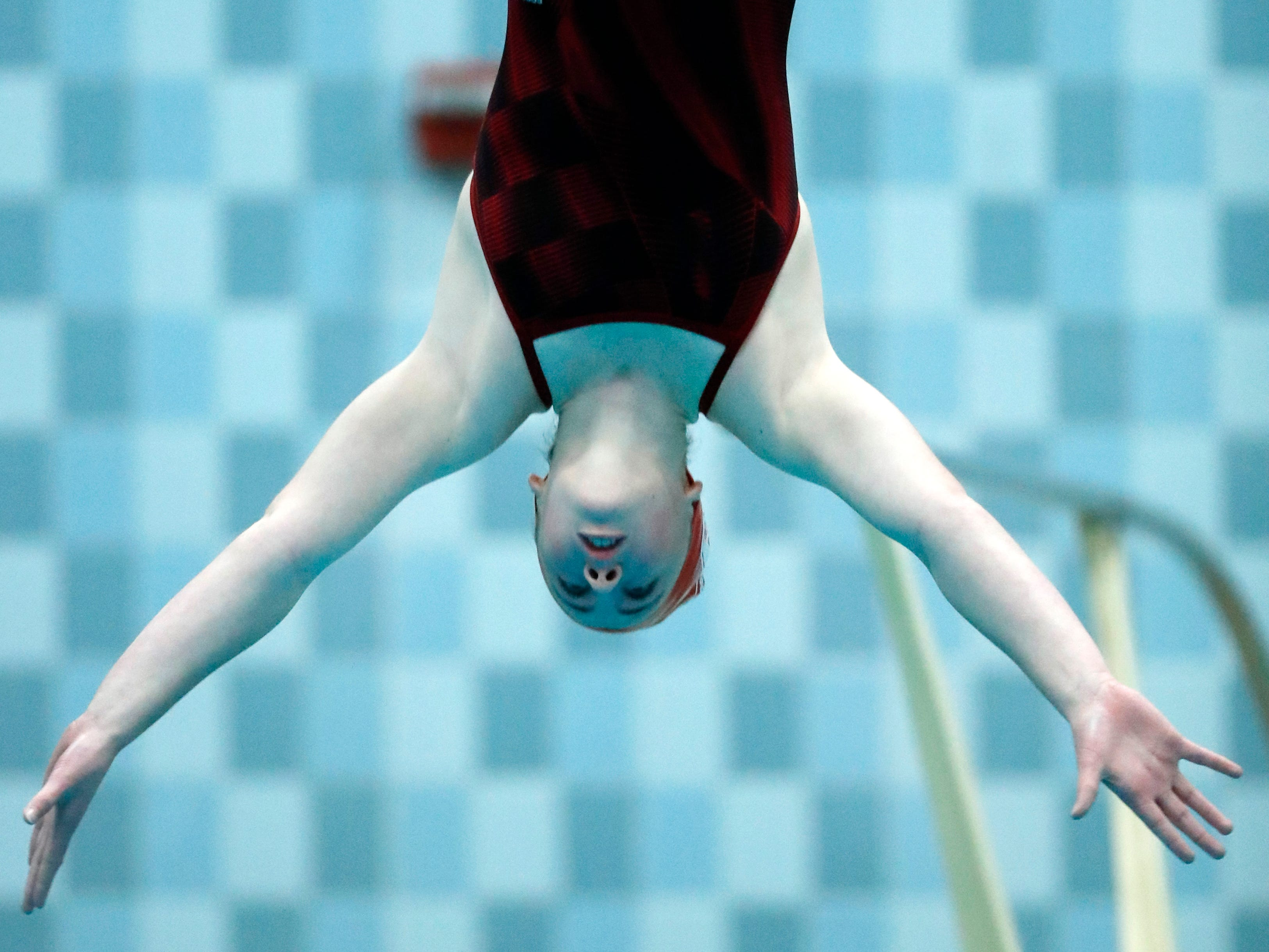 Neenah's Abbigale Priestley dives during the WIAA Division 1 State Swimming and Diving meet Saturday, Nov. 10, 2018, at the UW Natatorium in Madison, Wis.