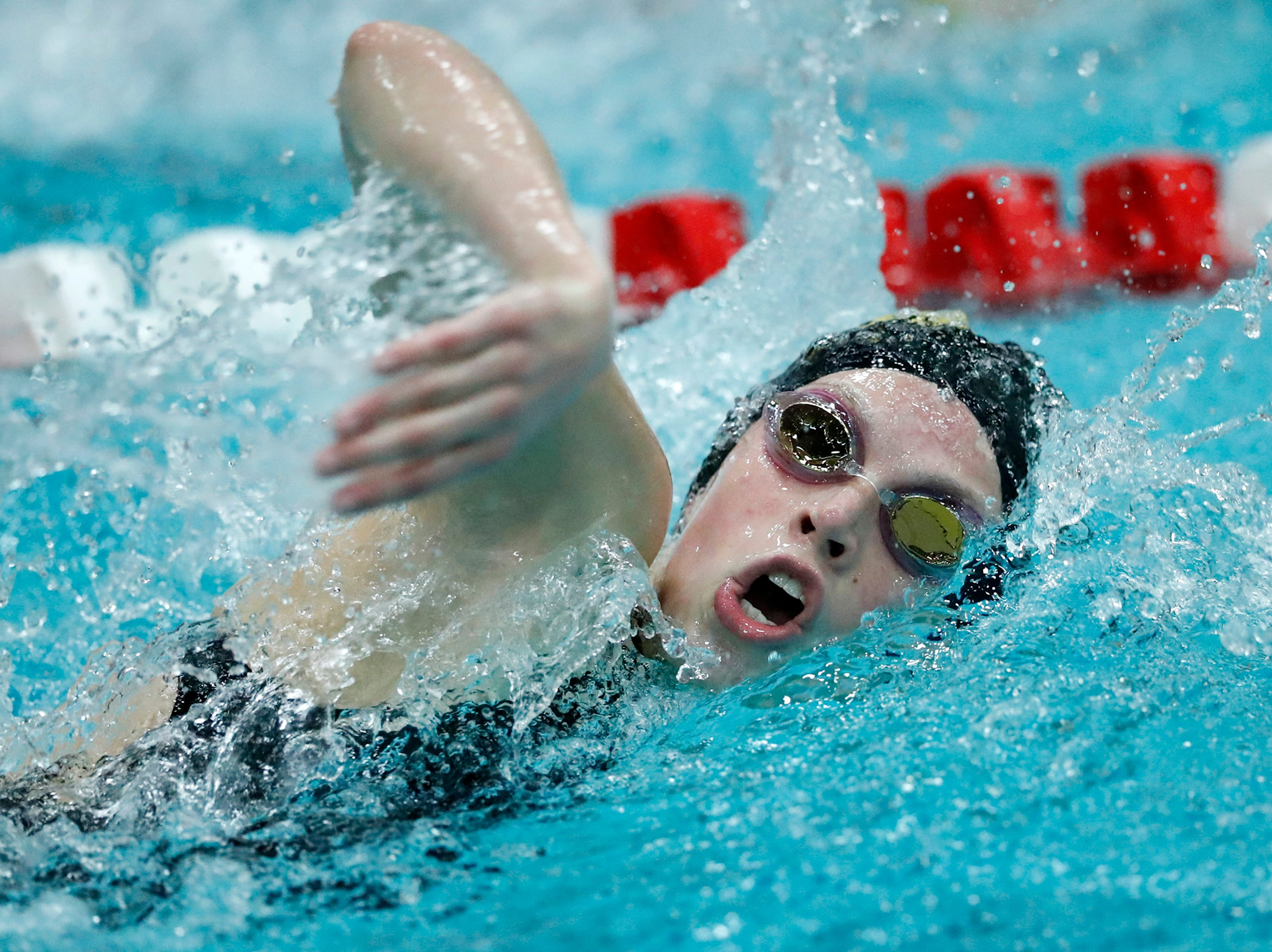 Ashwaubenon's Hallory Domnick races in the 500 yard freestyle during the WIAA Division 2 State Swimming and Diving meet Friday, Nov. 9, 2018, at the UW Natatorium in Madison, Wis.Danny Damiani/USA TODAY NETWORK-Wisconsin