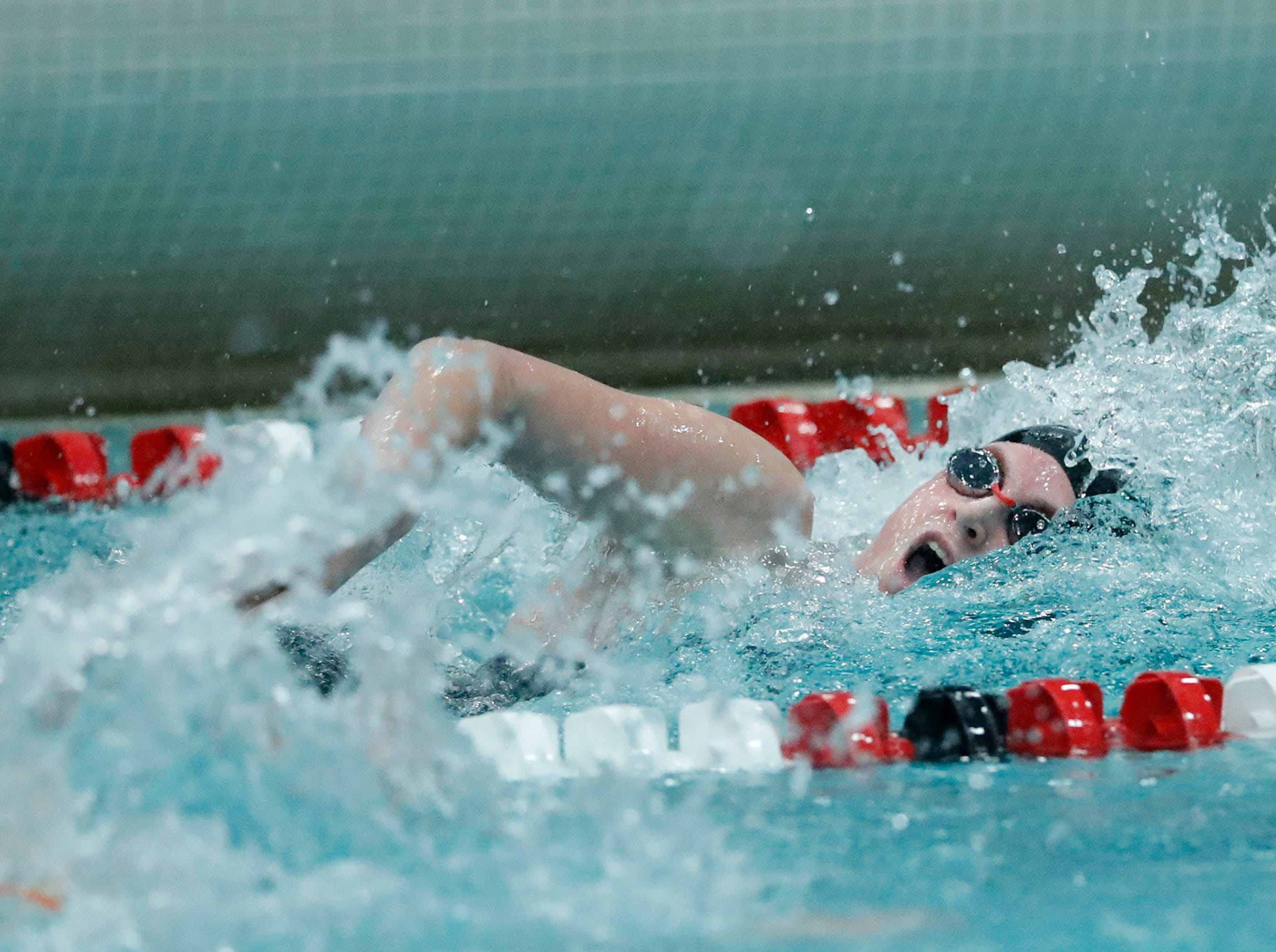 The Sturgeon Bay Co-op 200 yard freestyle relay team races during the WIAA Division 2 State Swimming and Diving meet Friday, Nov. 9, 2018, at the UW Natatorium in Madison, Wis.Danny Damiani/USA TODAY NETWORK-Wisconsin