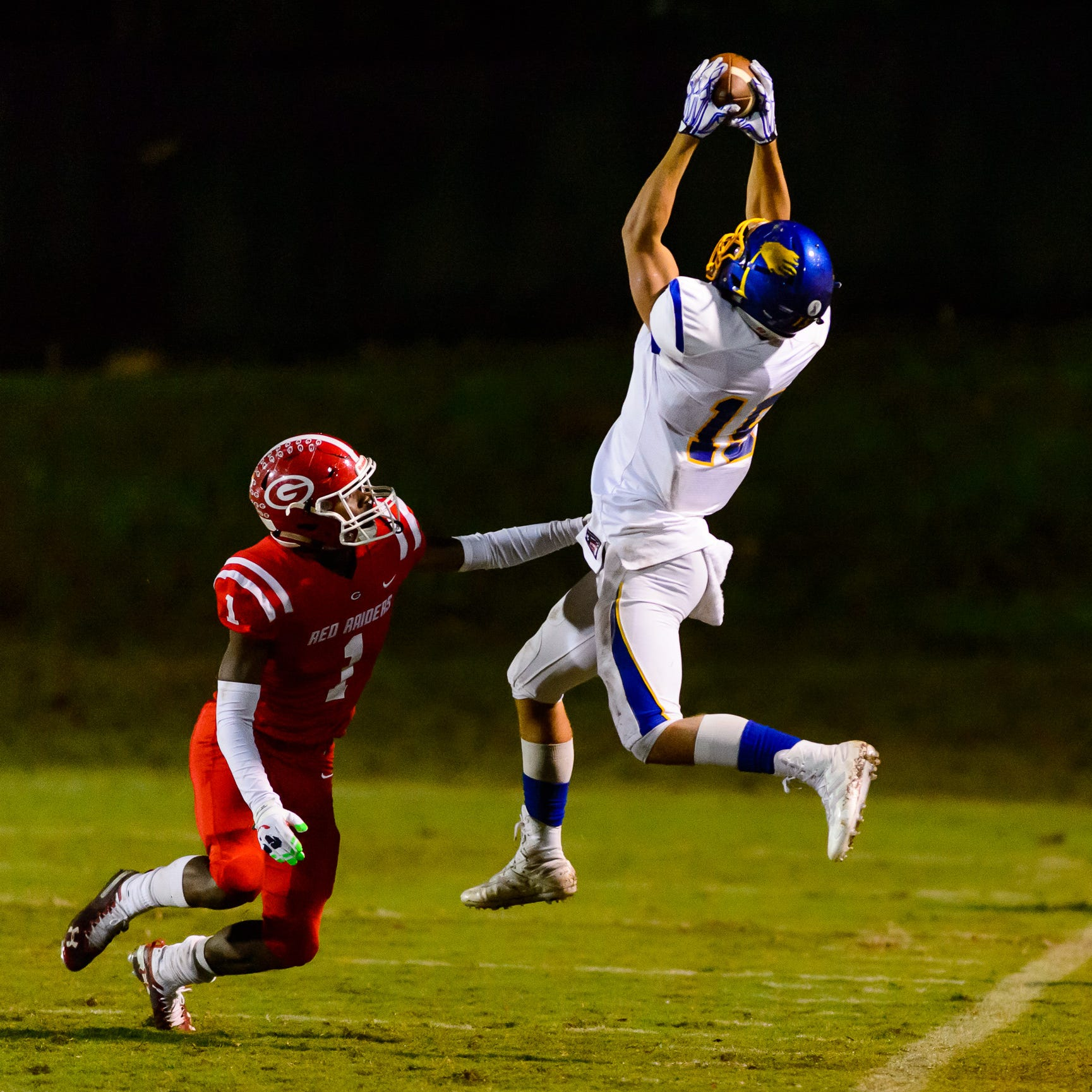 Wren's Tyler Cherry (15) makes a great catch against Greenville but is called out of bounds in the first round of the Class AAAA playoffs Friday, November 9, 2018, at Sirrine Stadium.