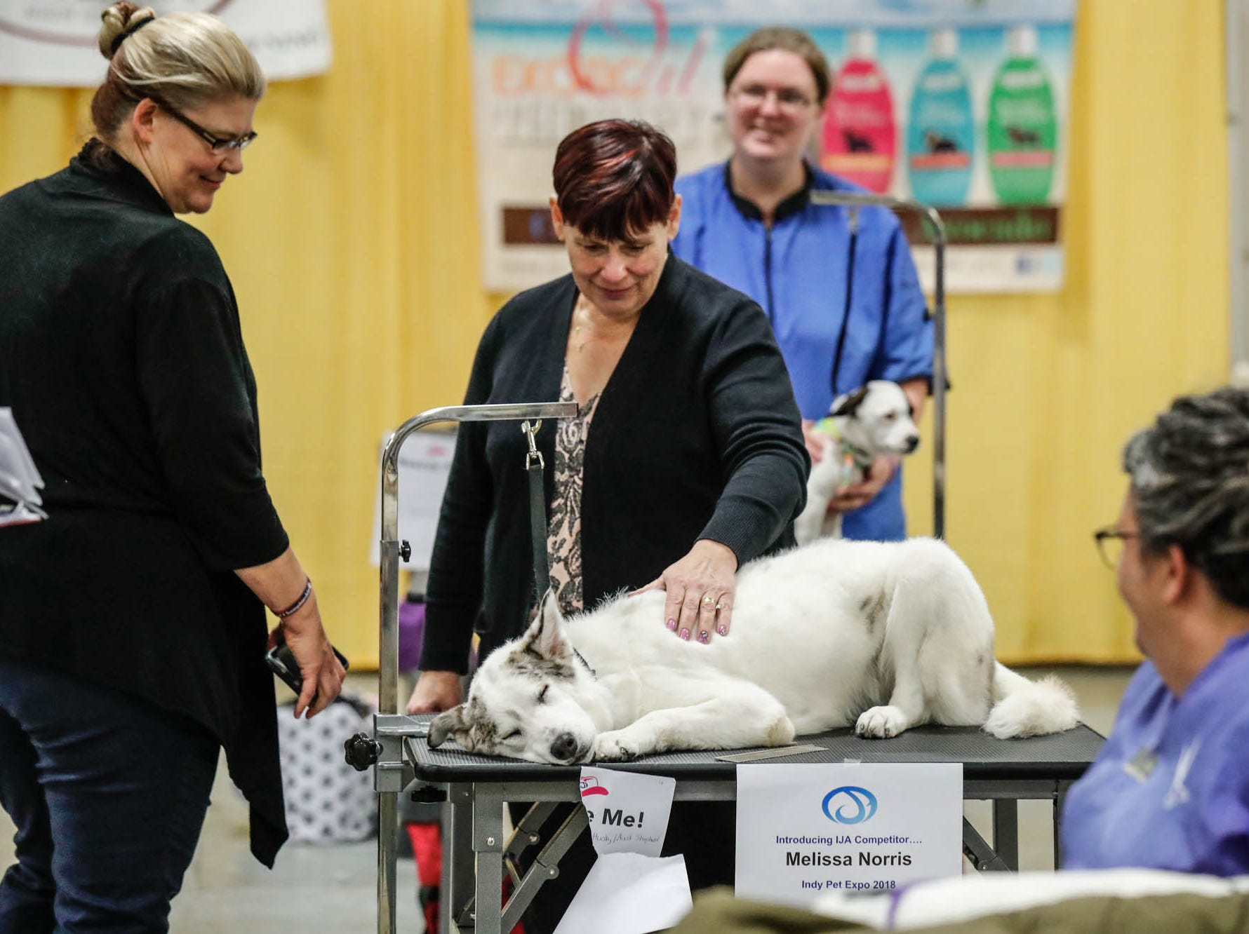 Grooming competition judge, Susan Watson, snuggles Ember, a deaf and blind dog up for adoption from Pink Heart Rescue at the Great Indy Pet Expo, held at the Indiana State Fairgrounds on Sat. Nov. 10, 2018. Ember was groomed by Melissa Norris.