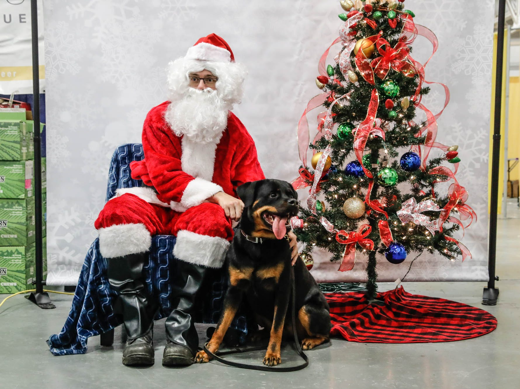 Pax, a dog, has her photo taken with Santa at the Great Indy Pet Expo, held at the Indiana State Fairgrounds on Sat. Nov. 10, 2018.