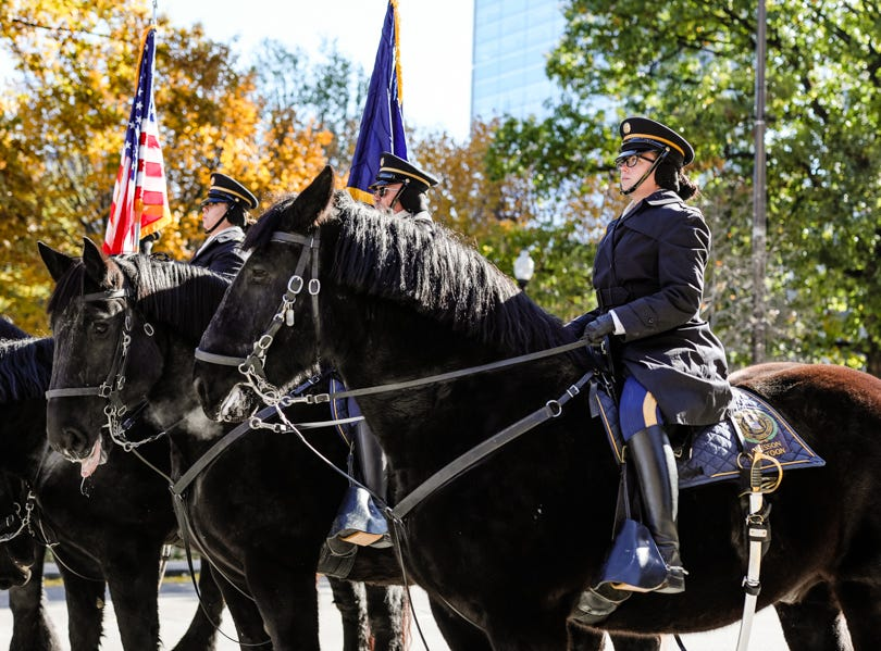 Horses are ridden in the Veterans Day Parade.