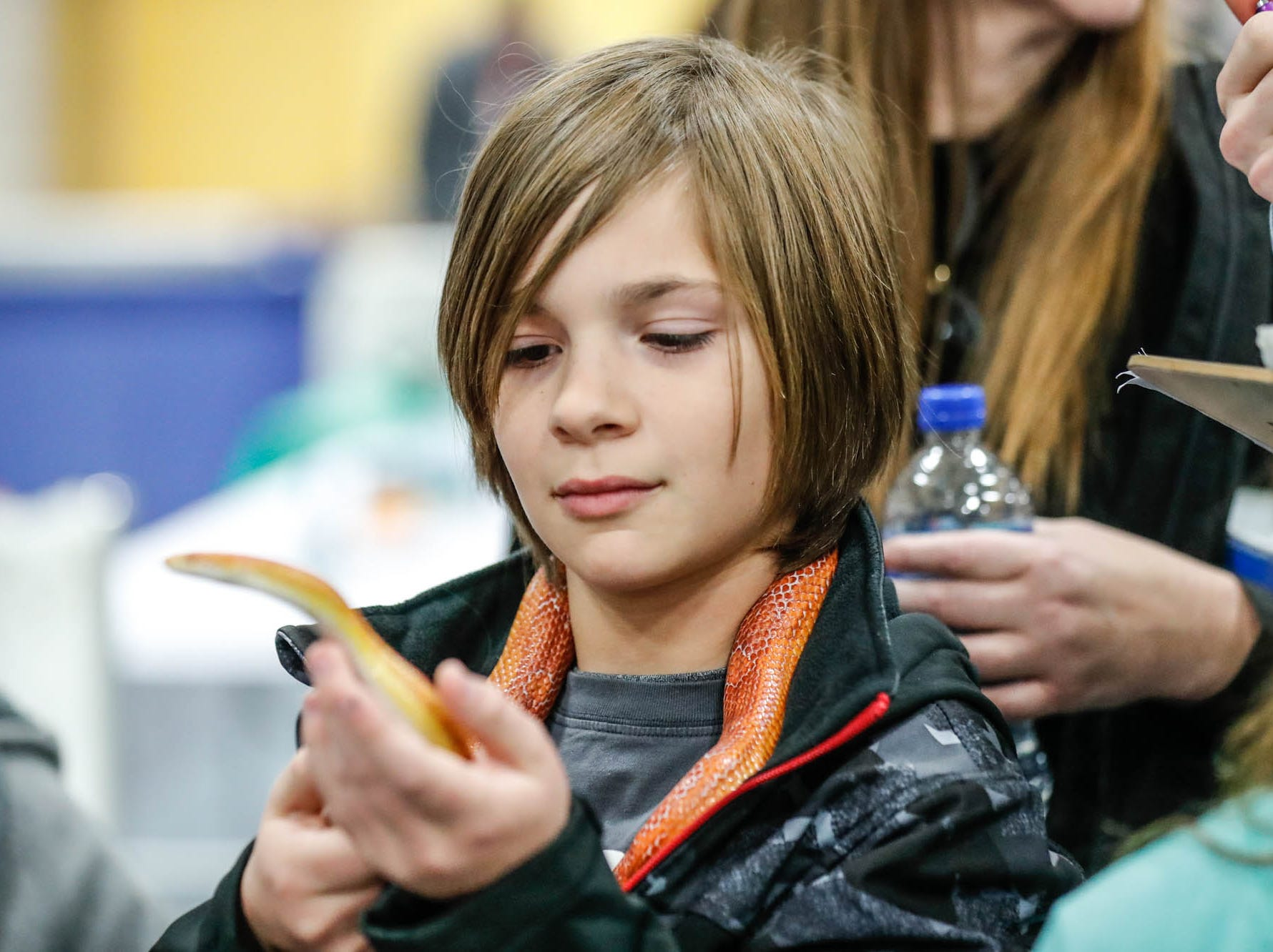 Cormac Cooper adopts a corn snake at the Great Indy Pet Expo, held at the Indiana State Fairgrounds on Sat. Nov. 10, 2018.