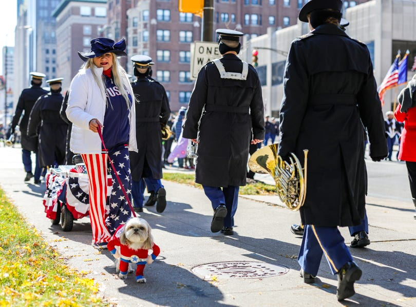 A dog attends the Veterans Day Parade.