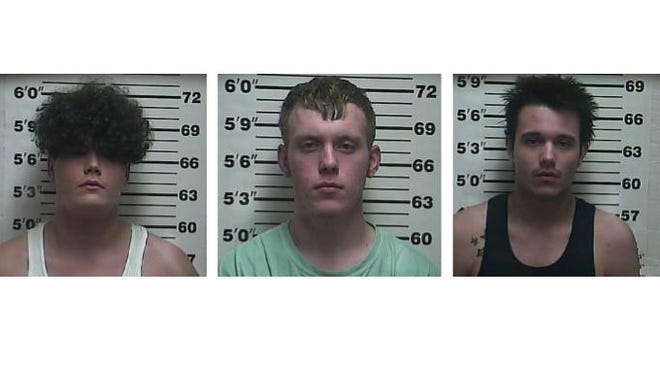 Christian James Allen, 18, Trever James Bradberry, 18, and Cody Wayne Brown, 18, were all charged with kidnapping, aggravated assault and evading arrest.