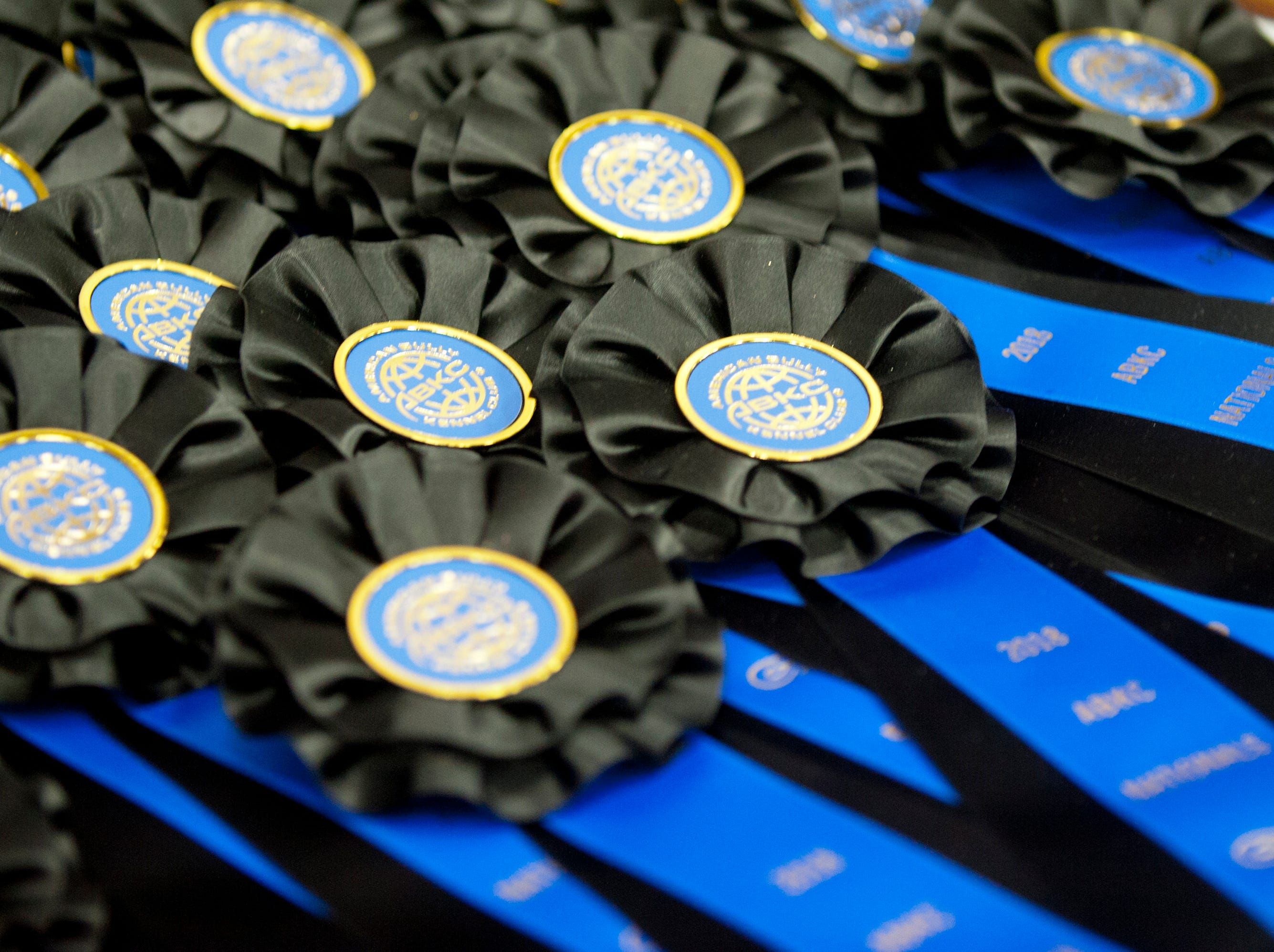 Detail of blue ribbons at the 2018 American Bully Kennel Club's 12th annual confirmation event at the Kentucky Convention Center in Louisville.November 10, 2018
