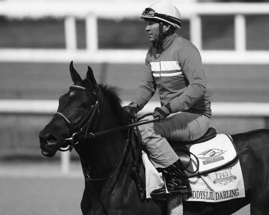 Exercise rider Odanis Acuna aboard Daddys Lil Darling.