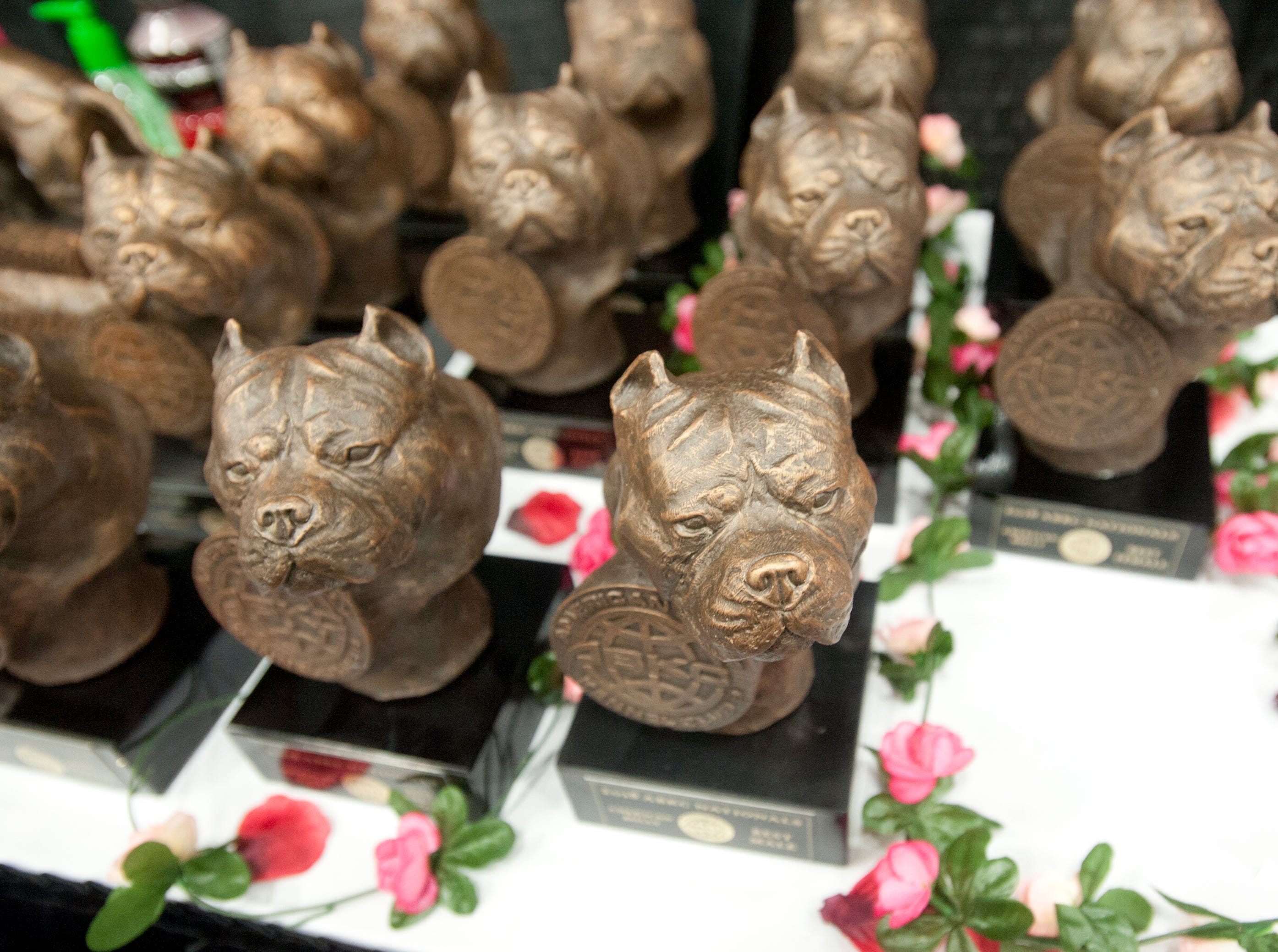 Detail of bronze bulldog awards at the 2018 American Bully Kennel Club's 12th annual confirmation event at the Kentucky Convention Center in Louisville.November 10, 2018