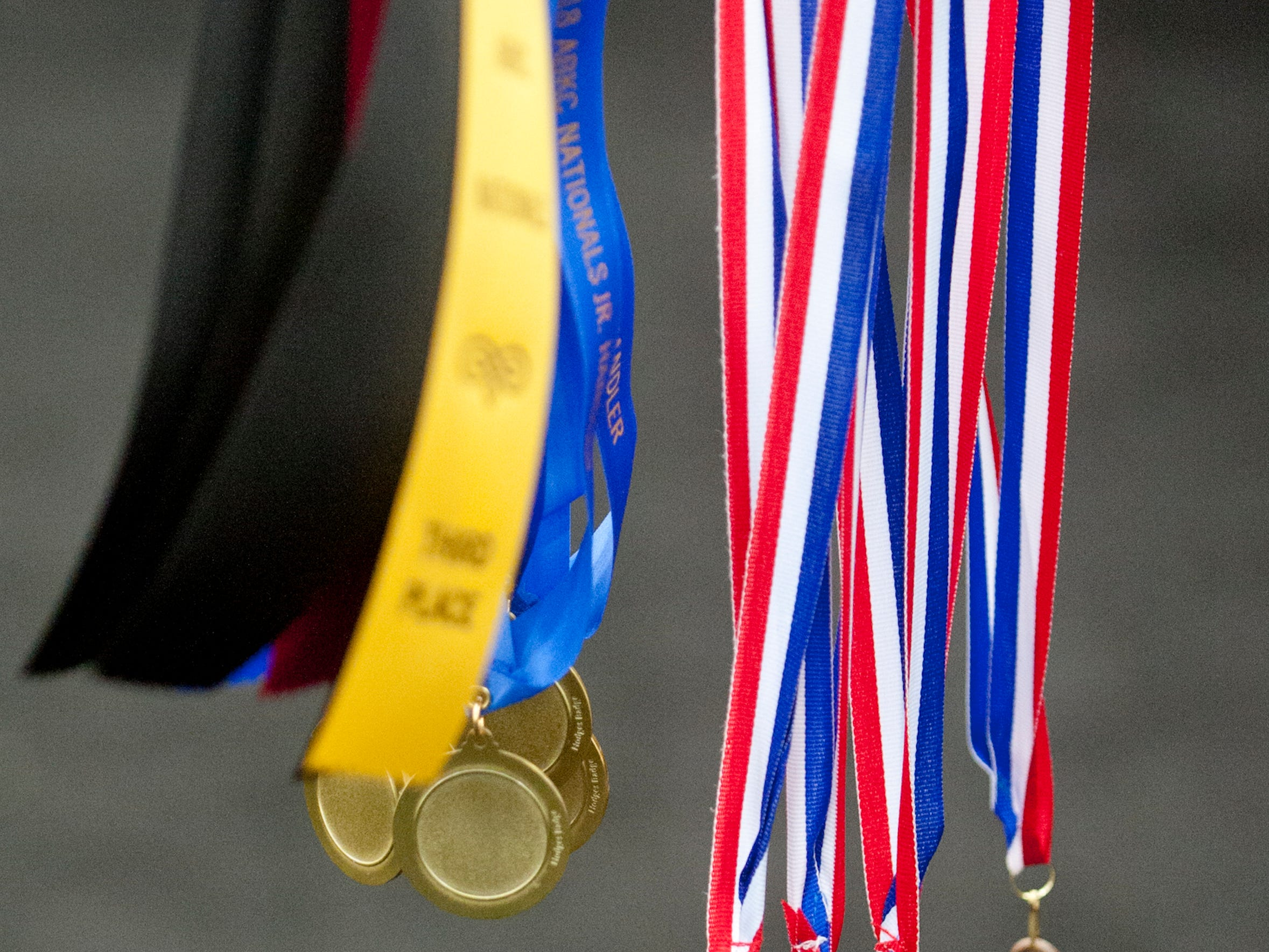 Detail shot of Junior Handler medals in the shape of bulldog heads and place award ribbons at the 2018 American Bully Kennel Club's 12th annual confirmation event at the Kentucky Convention Center in Louisville.November 10, 2018
