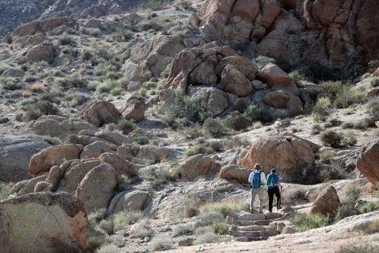 Dawne Robinson, the sister of missing Canadian hiker Paul Miller, and her husband David Robinson search for signs of Miller on the Fortynine Palm Oasis trail in Joshua Tree National Park on Saturday, November 10, 2018.