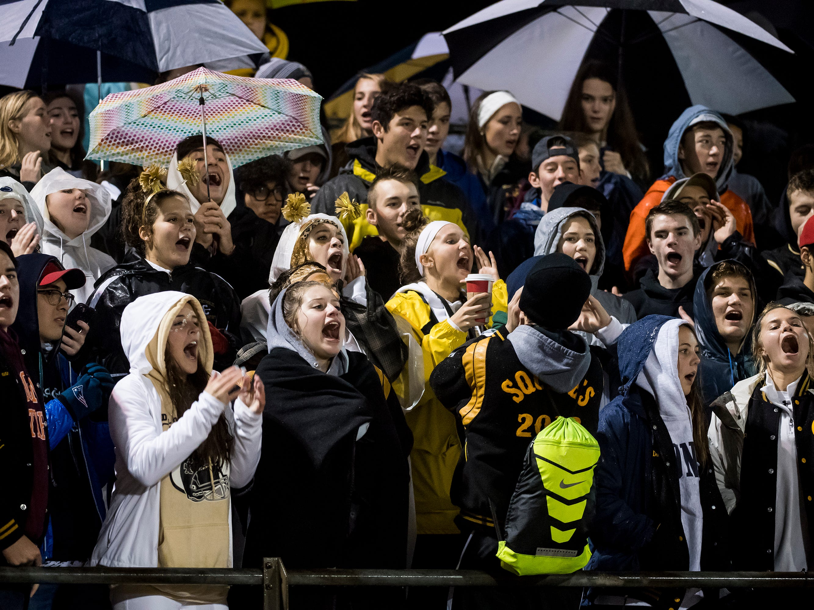 The Delone Catholic student section cheer on the Squires in the PIAA District 3 Class 2A championship game at South Western High School on Friday, November 9, 2018. The Squires fell to York Catholic 28-21 in overtime.