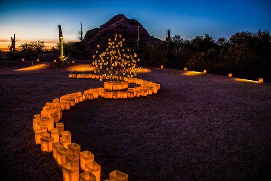 Las Noches de las Luminarias at the Desert Botanical Garden.