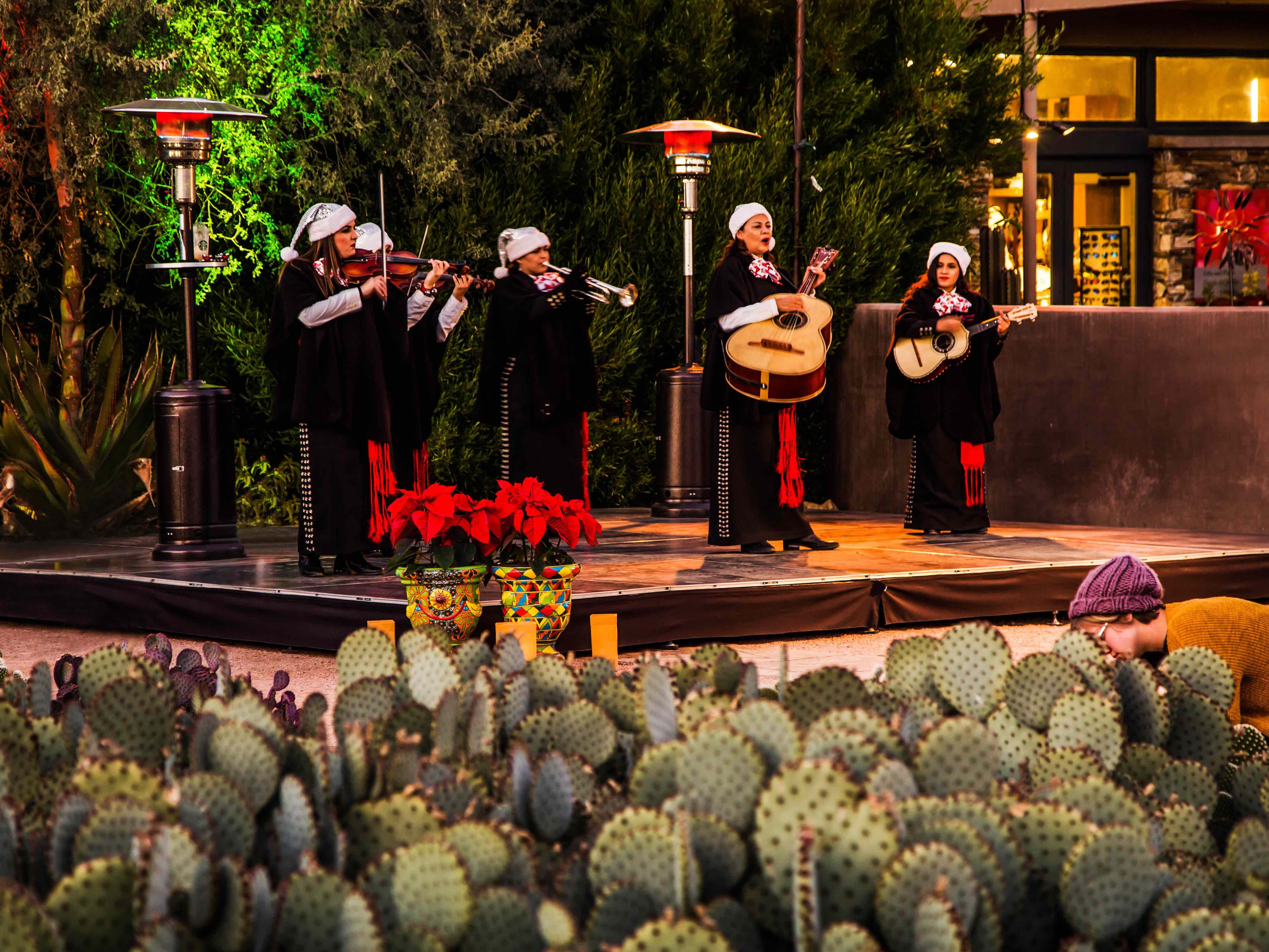 Las Noches de las Luminarias at the Desert Botanical Garden.
