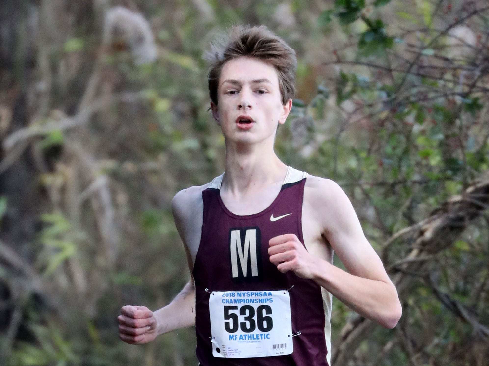 Sam Lawler from Pittsford Mendon, runs the boys Class B race during the 2018 NYSPHSAA Cross Country Championships at Sunken Meadow State Park in Kings Park on Nov. 10, 2018.