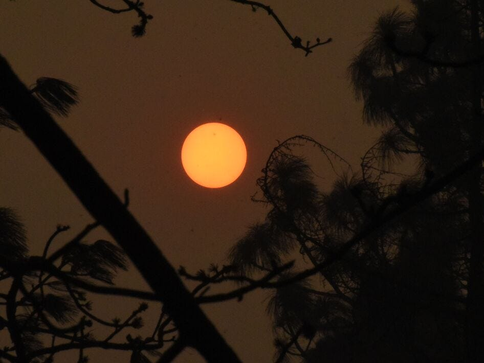 Smoke and ash in the air blocked out the sun over Butte County on Friday Nov. 9, 2018 after the Camp Fire devastated the California county on Thursday.