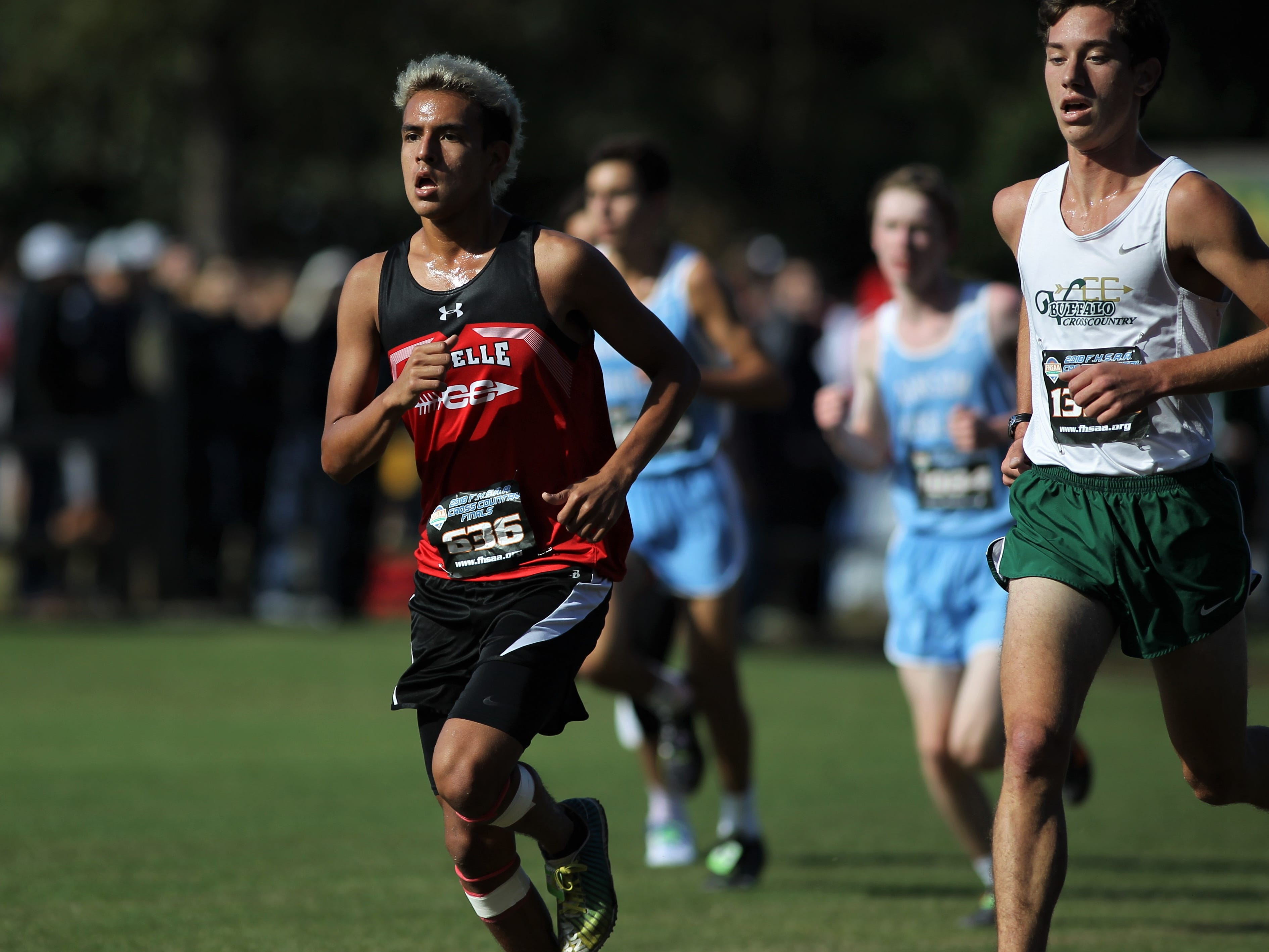 LaBelle's Marcos Rico races in the Class 2A boys race of the FHSAA Cross Country State Championships at Apalachee Regional Park in Tallahassee, Saturday, Nov. 11, 2018.