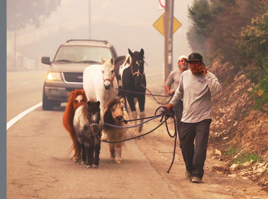 People lead horses and ponies down Pacific Coast Highway to an evacuation area at Zuma Beach in Malibu on Friday as the Woolsey Fire bears down on the community.