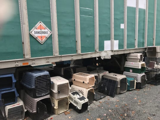 Cat cages, used to transport animals and store them while cages are cleaned, sit by a storage trailer at Hi Tor Animal Care Center in Rockland on Nov. 9, 2018