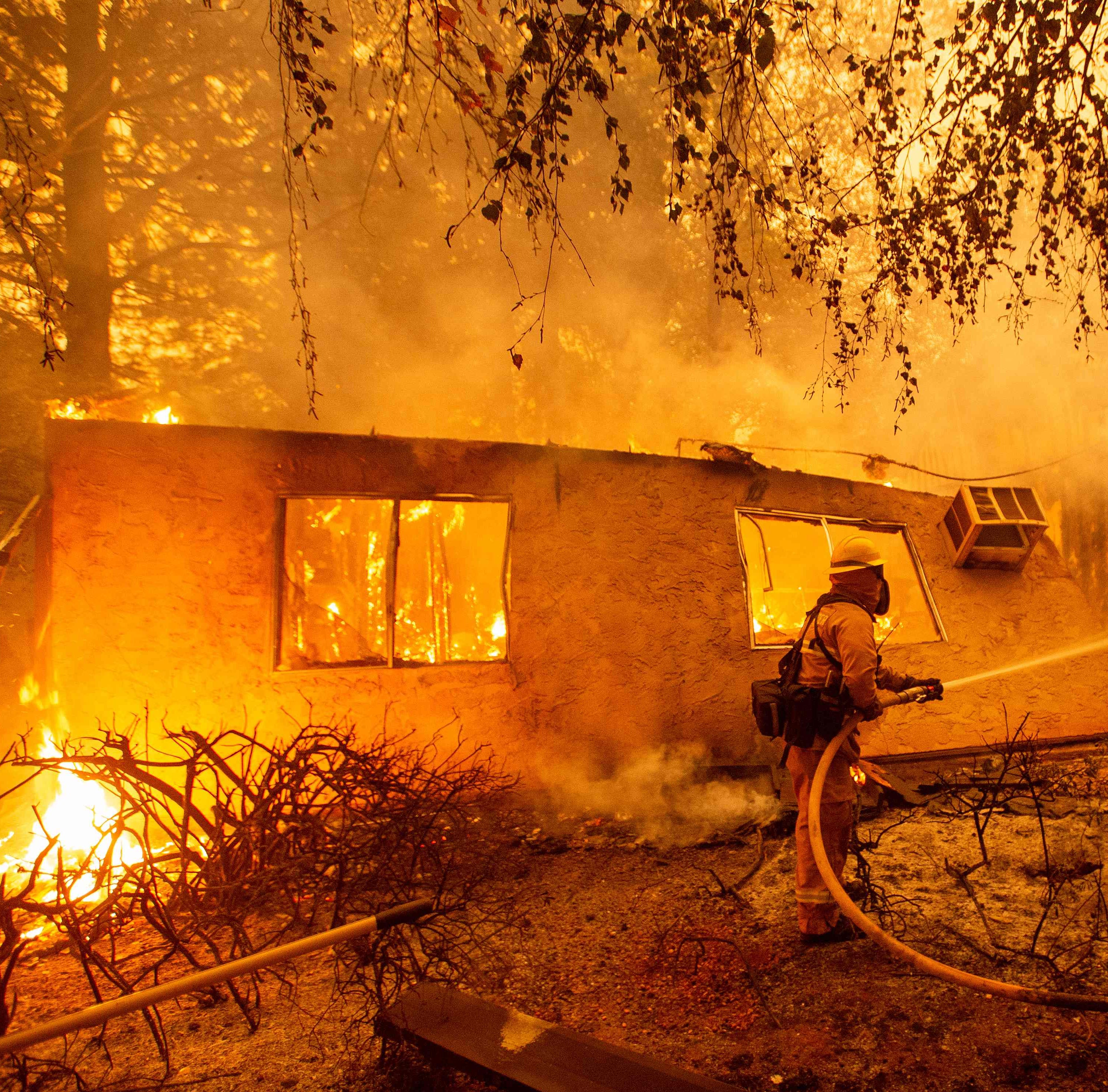 Doug LaMalfa: We need common-sense forest policies to prevent wildfires