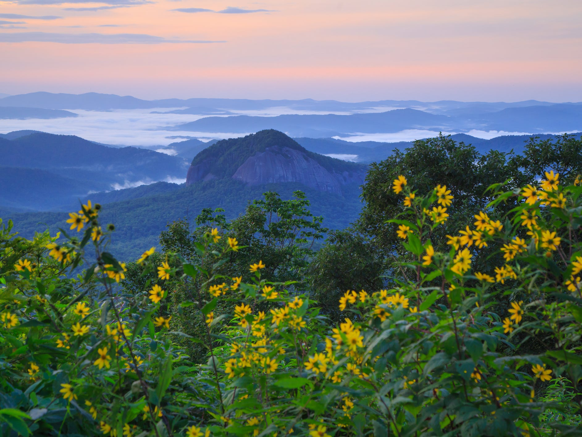 A view along the Blue Ridge Parkway.