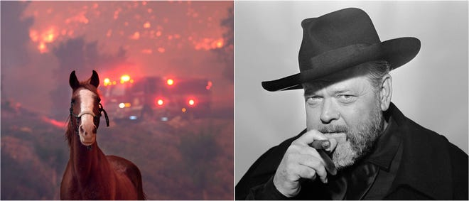 "Horses are spooked as the Woolsey Fire moves through property near Paramount Ranch in Agoura Hills, California / Orson Welles, who died in 1985, has a new movie opening Friday: ""The Other Side of the Wind."""