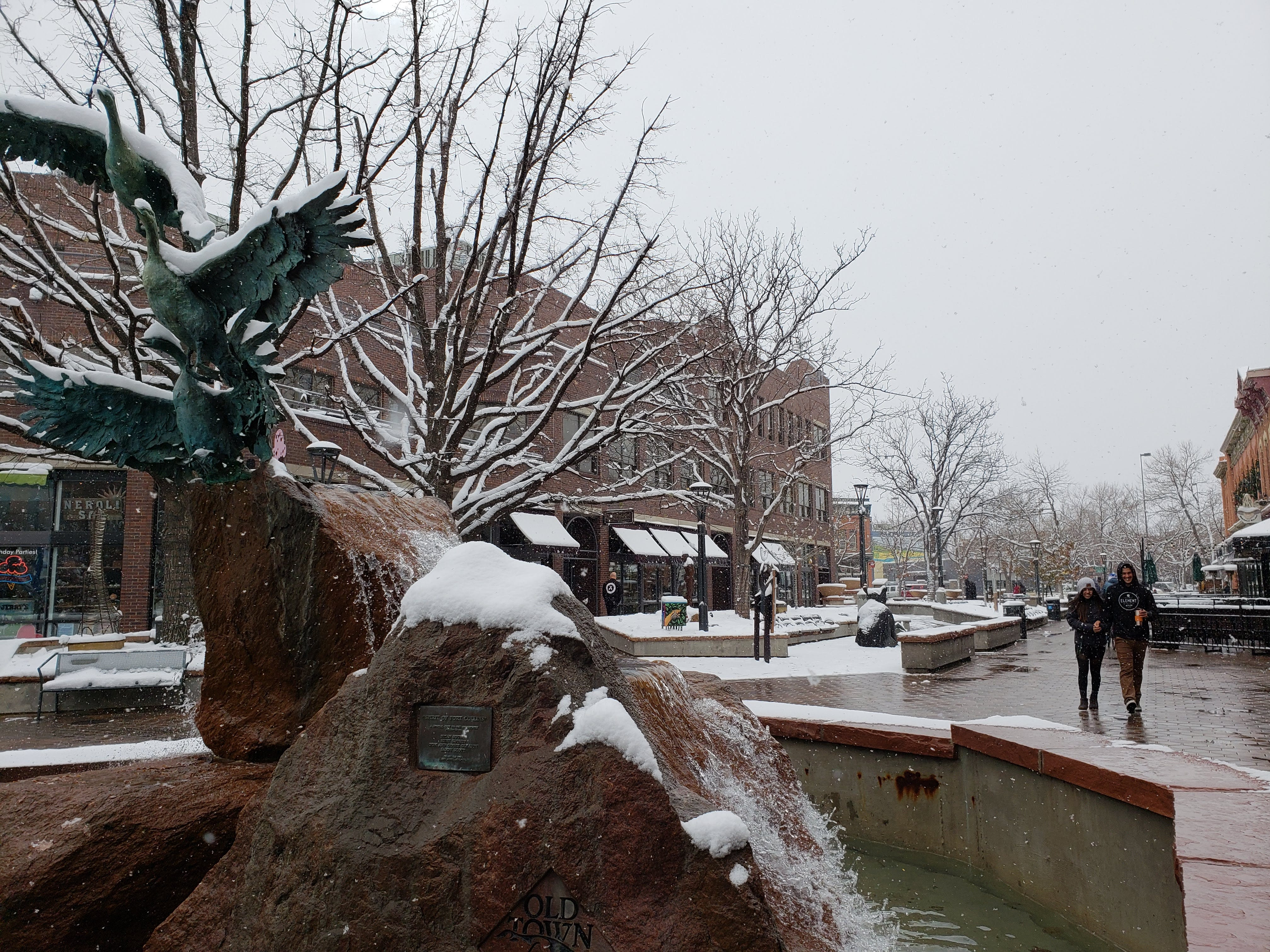 Scenes from a snowy Veteran's Day in Fort Collins on Nov. 11, 2018.