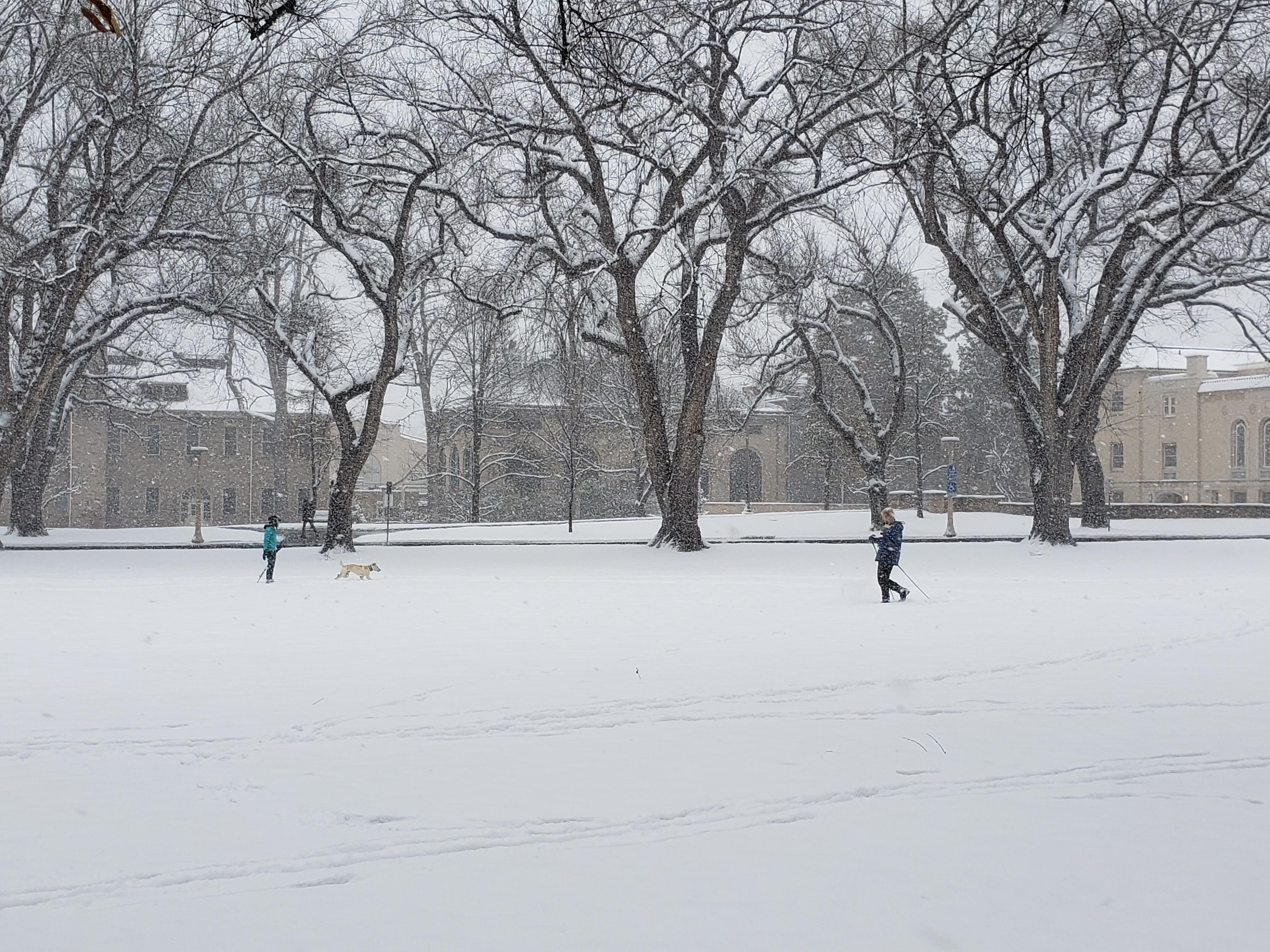 People ski around the Oval on the CSU campus with their dog on a snowy Veteran's Day Nov. 11, 2018.