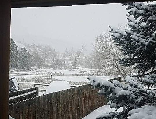 Snow blanketed Fort Collins on Sunday. Thank you for sharing your photos with us.