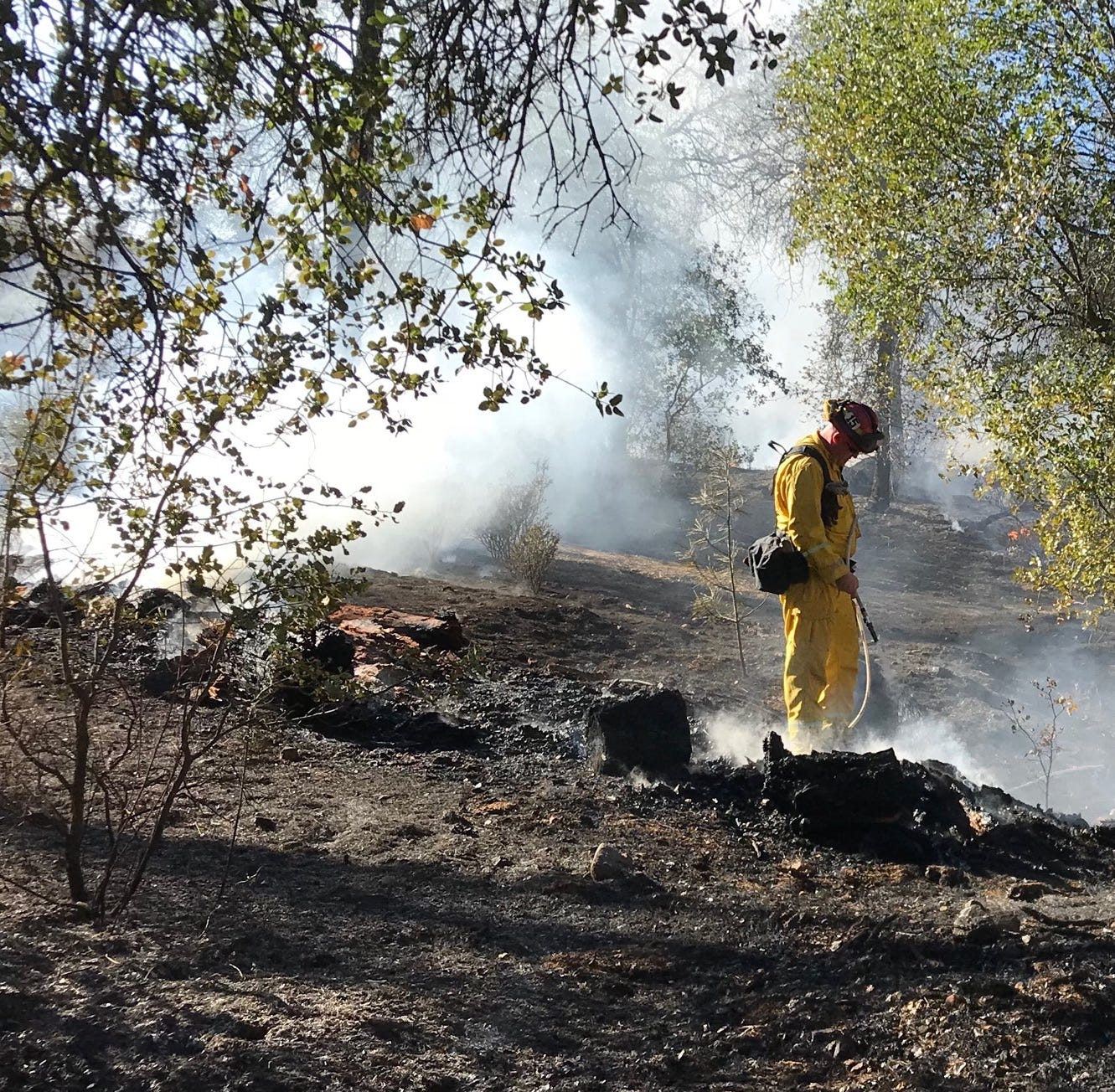 Firefighters quickly extinguish vegetation blaze north of Redding