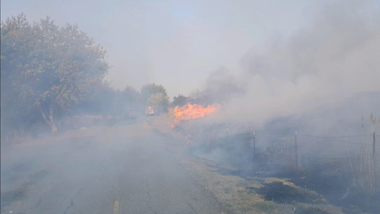 Smoke covers the road from a fire by Natividad.