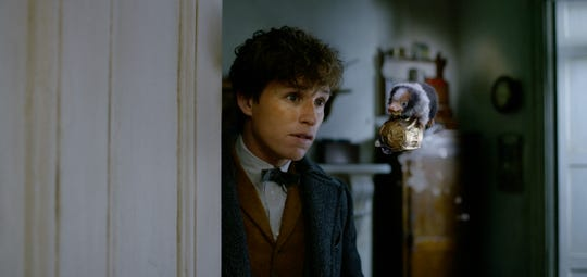 "Newt Scamander (Eddie Redmayne) encounters a mischievous baby Niffler in ""Fantastic Beasts: The Crimes of Grindelwald."""