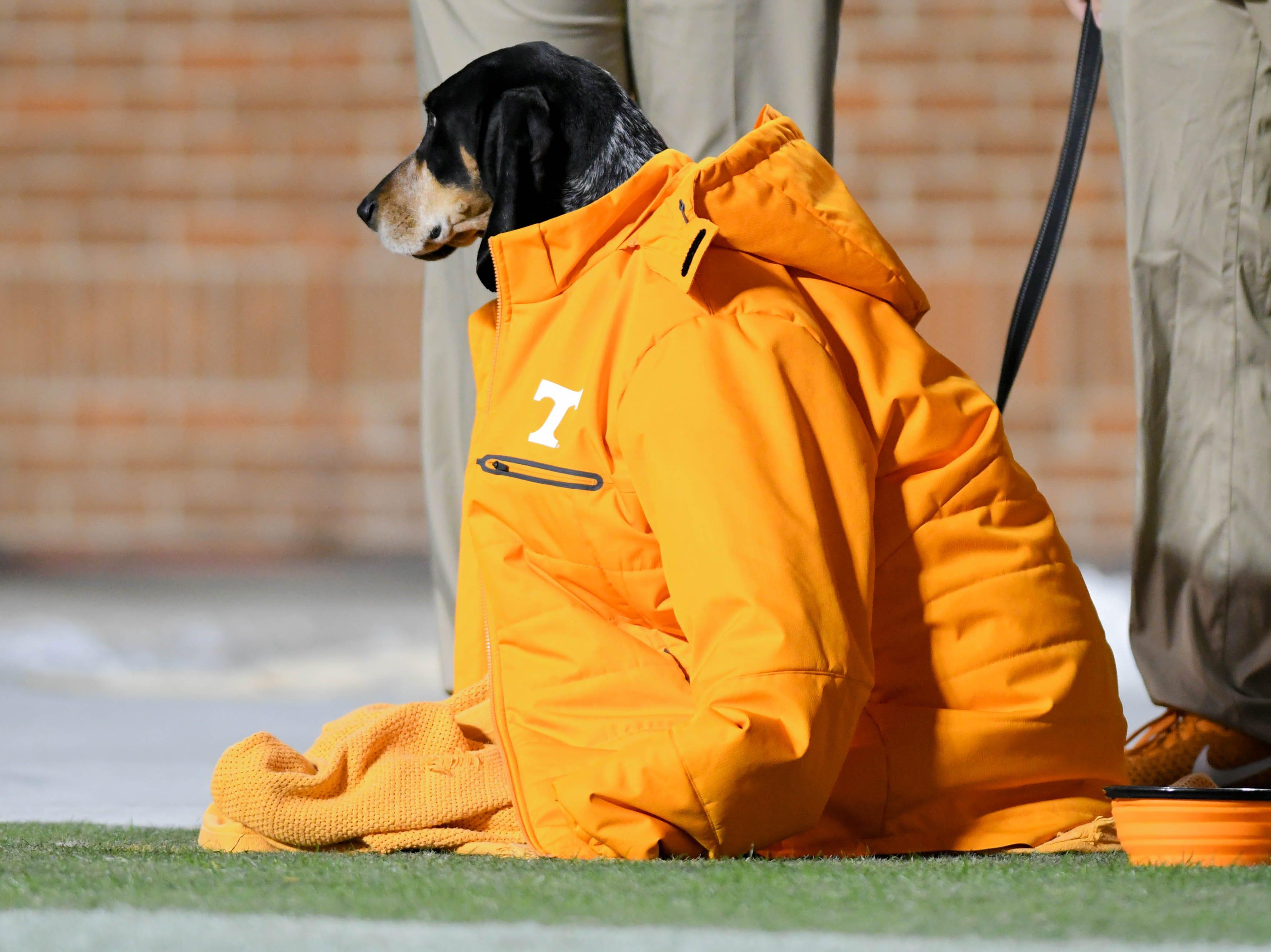 Week 11: Tennessee Volunteers mascot Smokey during the second half against the Kentucky Wildcats at Neyland Stadium.