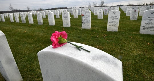 A lone pink carnation rests atop a headstone Monday at the Great Lakes National Cemetery in Holly.