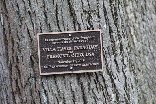 Commemorative placard linking Fremont and Villa Hayes, Paraguay, was nailed into a bark hickory and oak tree that are intertwined in Spiegel Grove.