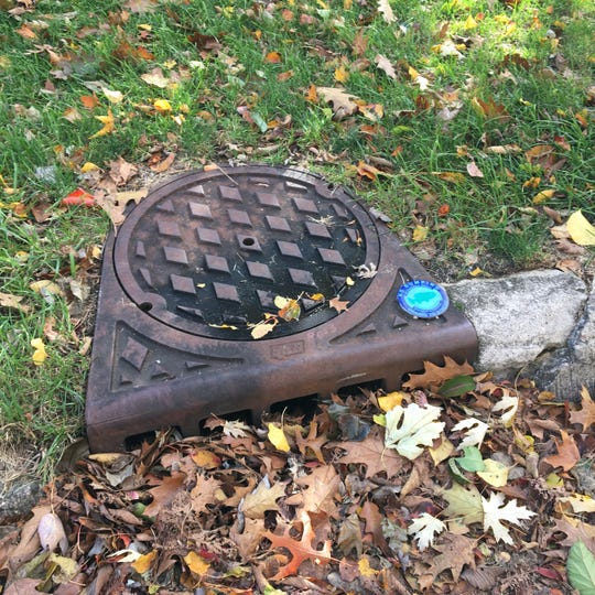White Rive Alliance says to remove leaves from storm drains to reduce pollution of waterways.