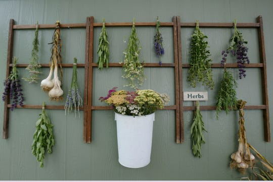 A file photo shows a variety of herbs drying on the wall at Erin's Meadow Herb Farm.