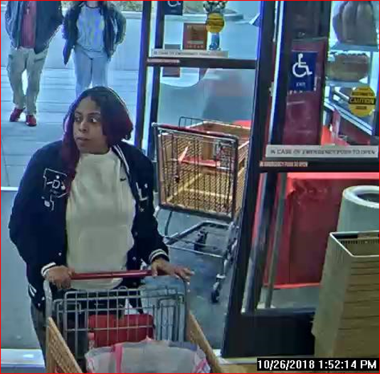Home Goods theft suspect